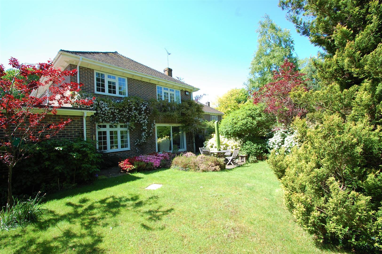 Montague Gardens, Petersfield