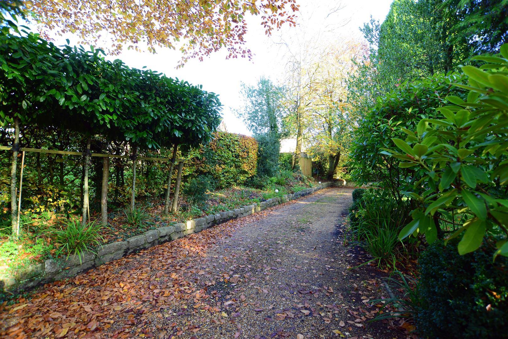 Bones Lane, Petersfield
